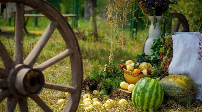 Проведення Днів сіл та селищ в Балаклійському районі