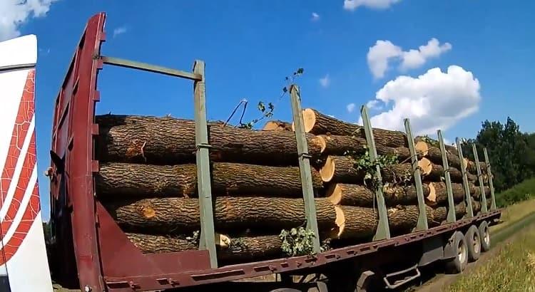 з Балаклійського району вивозять дуб