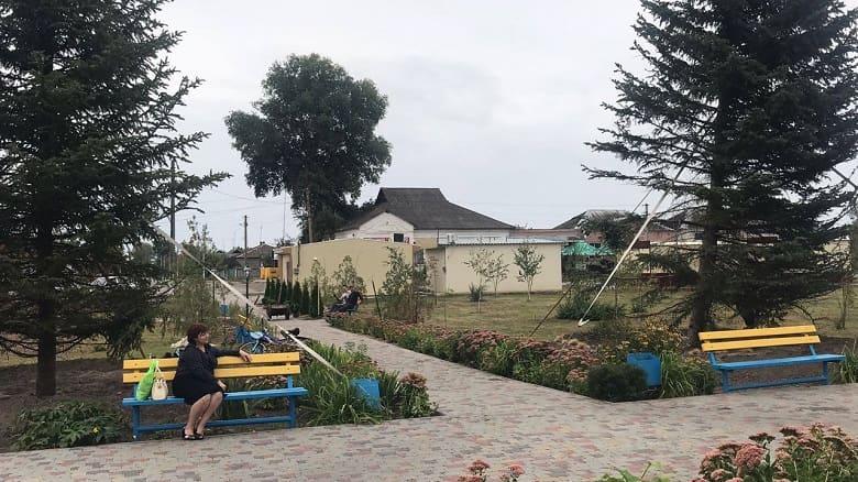 Ко дню поселка в Андреевке высажена Аллея Мира