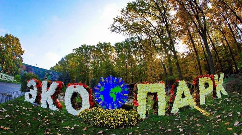 Бал хризантем в Фельдман Экопарк, открытие 6 октября
