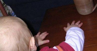 Собаки покусали хозяев, а девятимесячный ребенок обварился кипятком