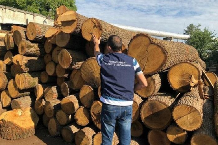 Прокуратура обшукує лісгоспи, що можуть бути причетні до незаконної порубки дерев, - ФОТО