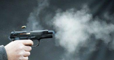 Стрелянина