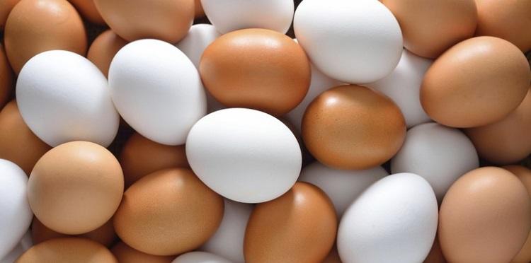 яйца экспорт