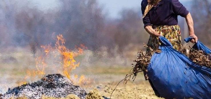 випалювання трави та сміття