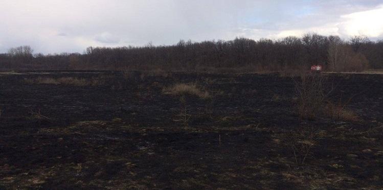 лісова пожежа в балаклій