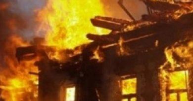 Пожежою в селищі Андріївка знищено будинок (фото)