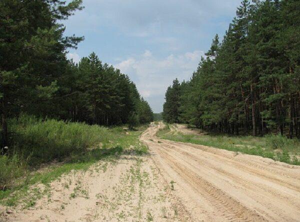 Балаклійський ліс