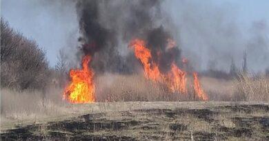 пенсіонер врятував від пожежі міст
