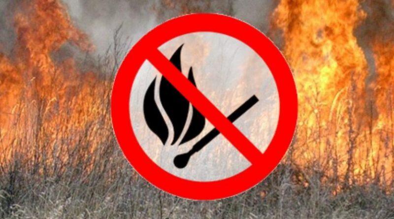 Небезпека підпалу сухої трави