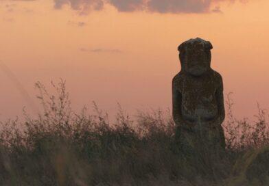 На Харьковщине земли исторического памятника розпахали для посева пшеницы